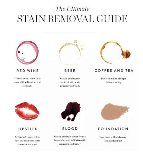 10 Best Stain Removal Tips by 12 Awesome Stain Removal Tips To Help You When You An