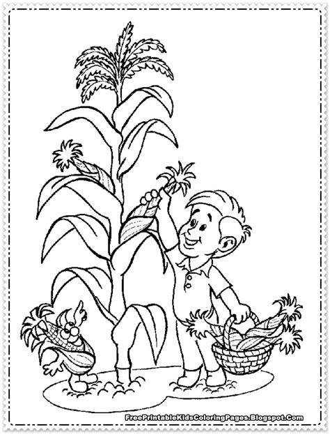 corn coloring pages for thanksgiving free farm with crops coloring pages