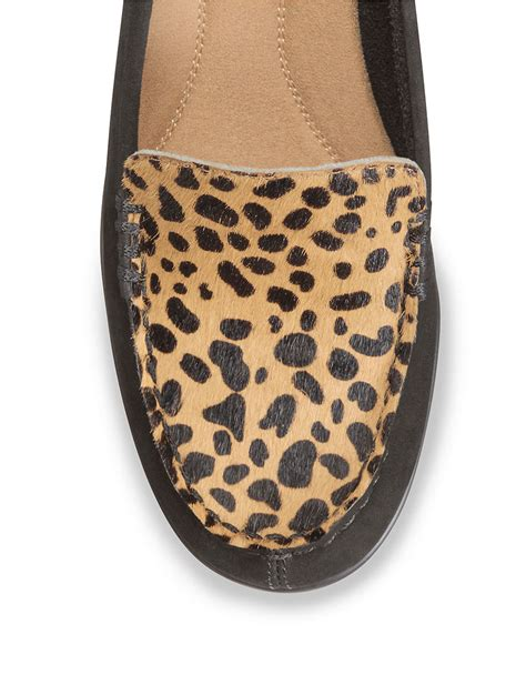 aerosoles leopard loafer aerosoles wise choice leather and leopard print calf hair