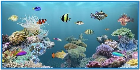 live screensavers for windows live aquarium screensaver download video search engine