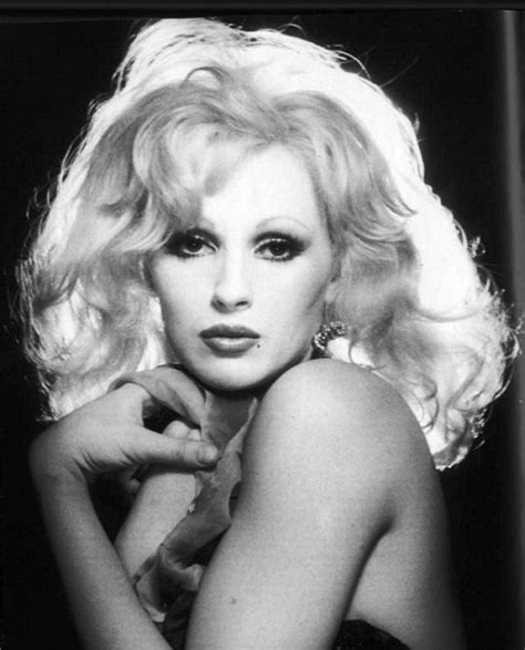 transgender photo albums candy darling www pixshark com images galleries with a