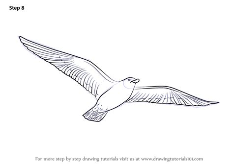 how to draw doodle birds learn how to draw a flying bird birds step by step