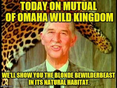 Omaha Meme - trump crawling imgflip