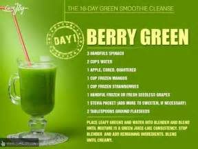 Green Flush Detox by 13 Best 10 Day Cleanse Images On 10 Day