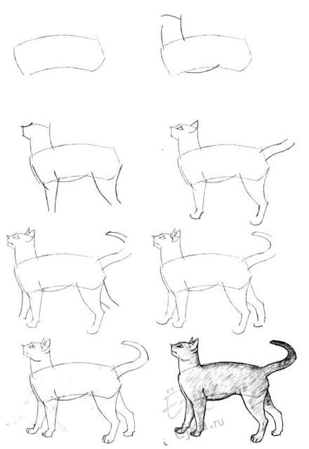 imagenes de vacas para dibujar a lapiz como hacer un dibujo