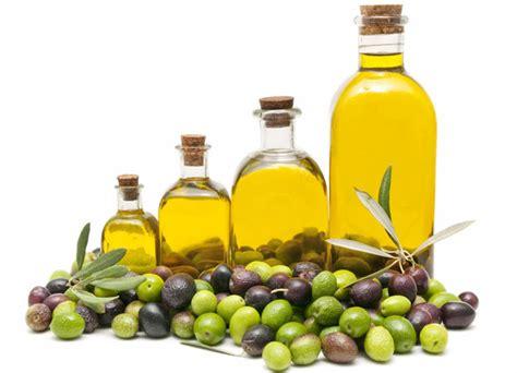 Minyak Ajaib Banyak Guna Insya Allah minyak zaitun obat alami atasi masalah kesehatan dan kecantikan