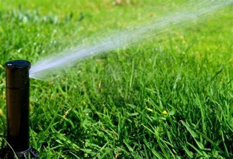 backyard irrigation systems adding a sprinkler system to your backyard hardys lawn
