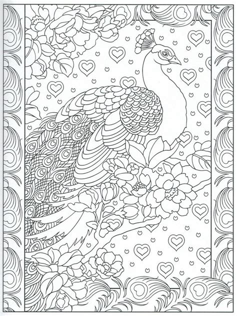 peacock feather coloring pages colouring adult detailed