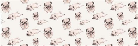 how to install pug how to install this dribbling pug header background litle pups