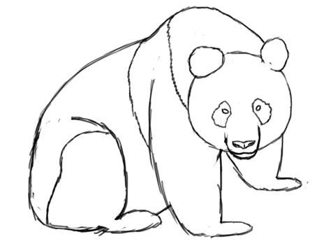 Panda Outline Drawing panda line drawing clipart best