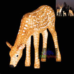 outdoor decortive lighted reindeer for holidays view