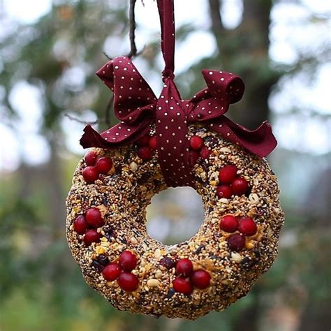 make a diy birdseed wreath to brighten up your backyard