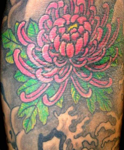 japanese chrysanthemum tattoo chrysanthemum images designs