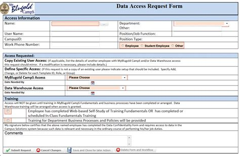 server request form template request access
