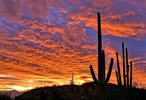 louis cantillo photography tucson sunset
