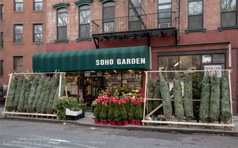 christmas trees can only be legally sold on nyc streets in