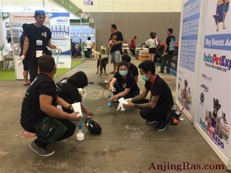 Max 85g Snack Sosis Anjing layanan jasa outsourcing pooophelper indonesia jual anak anjing artikel anjing adopsi anjing