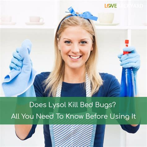 will lysol kill bed bugs blogs page 63 of 65 love backyard