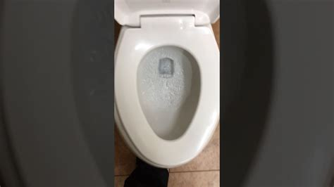 Would You Eat On A Toilet Seat by 1181 2007 As Madera A Big Amount Of Toilet