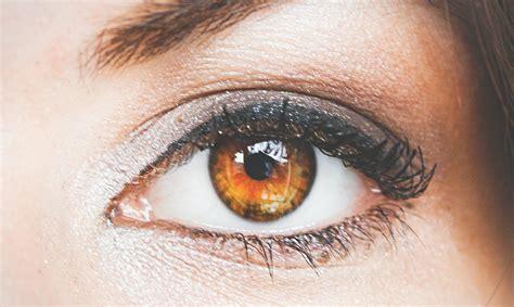 imagenes ojos color miel 191 azules o marrones 191 qu 233 color de ojos es m 225 s atractivo