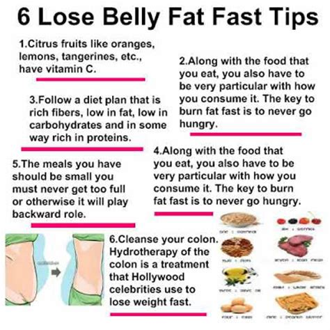 4 quick tips to find the best house blueprints interior belly fat combat 6 lose belly fat fast tips