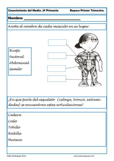 recursos generales conocimiento segundo y ejercicios de conocimiento medio para segundo primaria