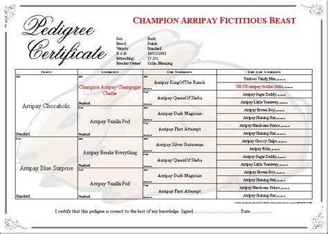 rabbit pedigree template rabbit pedigree template invitation template