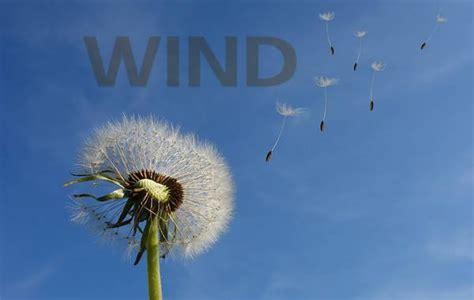 proposte wind mobile passa a wind migliori offerte giugno 2018 per tutti e in