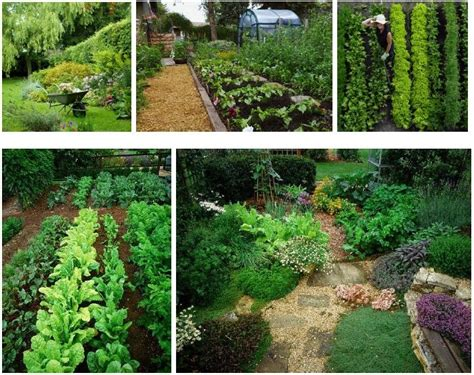 Permaculture Permaculture Dreaming In Permaculture Permaculture Vegetable Garden Layout