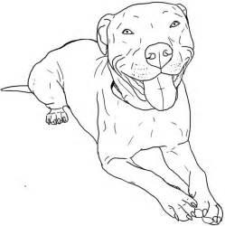 pitbull coloring pages pitbull coloring page pitbull coloring page coloring sky