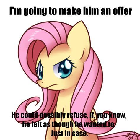 Mlp Fluttershy Meme - don fluttershy my little pony friendship is magic