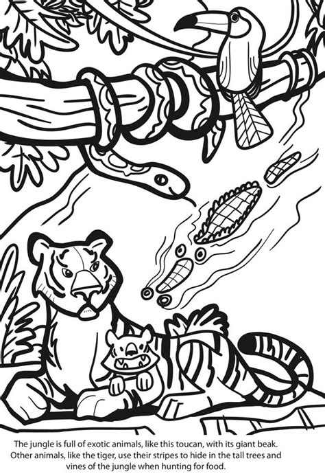 jungle themed coloring pages 17 best images about coloring pages on pinterest jungle
