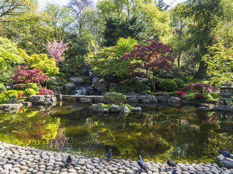 Garden Saga by How To Create A Japanese Garden Saga