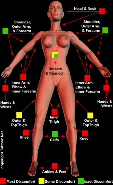 tattoo pain diagram female does it hurt tattoo pain chart