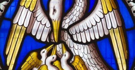 Wedding At Cana Niv by Stained Glass Pelican Feeding Its Ancient Symbol
