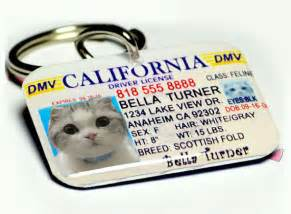 Dog tag pet tag custom name tag from id4pet on etsy