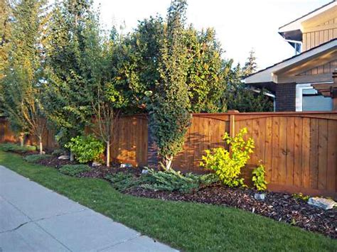 Backyard Fence Landscaping Ideas by Landscaping Ideas Backyard Along Fence Pdf