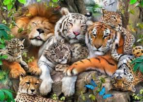 Tiger Cheetah Leopard Jaguar Panther Wow All Big Felines Together Like You Never Seen Before