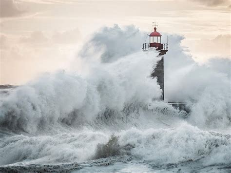 photo of a felgueiras lighthouse image portugal national