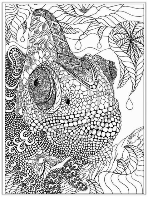 coloring pages young adults coloring pages handsome free adult printable coloring