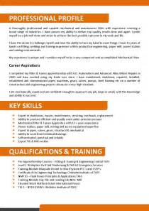 we can help with professional resume writing resume