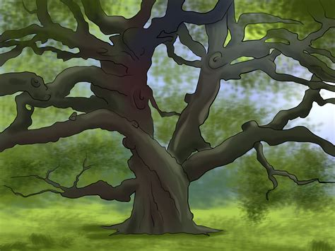 trees to buy how to buy an oak tree 12 steps with pictures wikihow