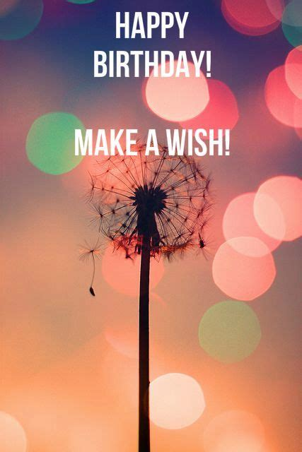 happy birthday and make a wish pictures photos and images for and
