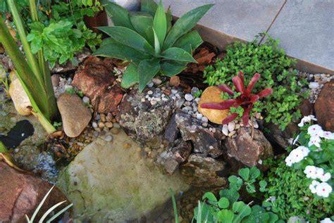 ver jardines jardim pequeno em casa 35 modelos de jardins