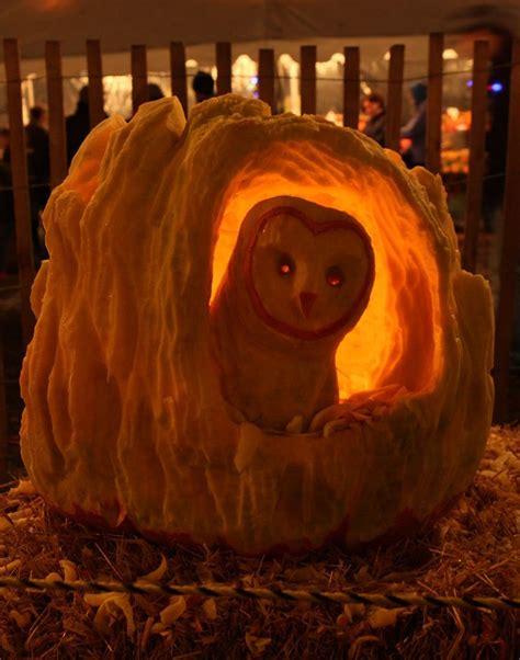 owl pumpkin barn owl pumpkin carving owl s for amanda