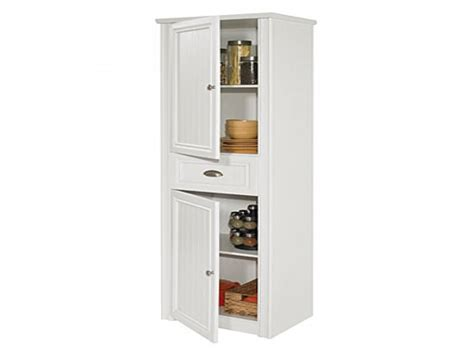 big lots storage cabinets with doors cabinet with doors white raised panel cabinet doors
