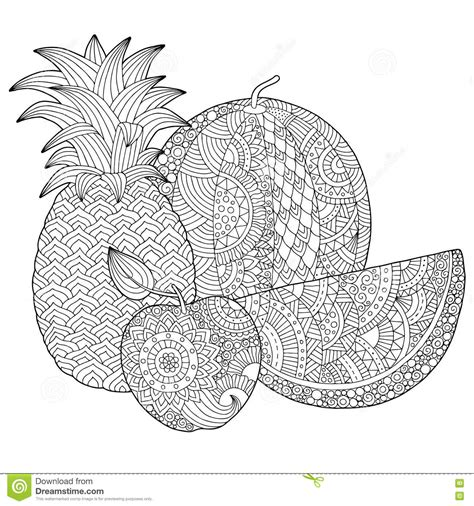 Vector Hand Drawn Pineapple Watermelon Apple Coloring Book Cover L