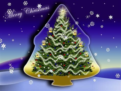 merry christmas main window polysavers lovely fir tree  twinkling lights  falling