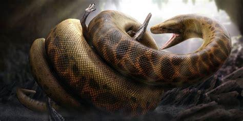 film thailand ular raksasa ular paling terbesar di dunia hidup kembali wartainfo com