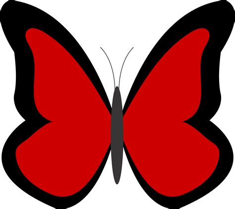 clipart pictures pictures of butterflies clipart best